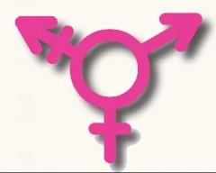 Trans-logo.jpg