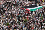 manifestation-flottille-palestine1.jpg